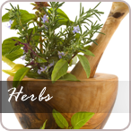 medicinal and other herbs